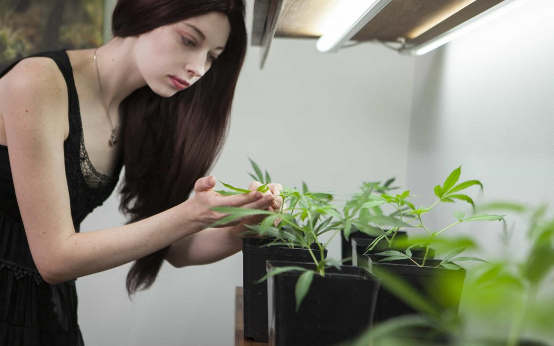 High Times Cultivating Business with Women Grow
