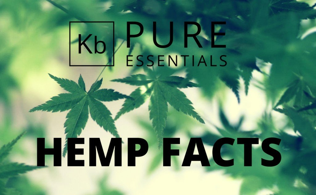 Hemp History Month: Get the Facts