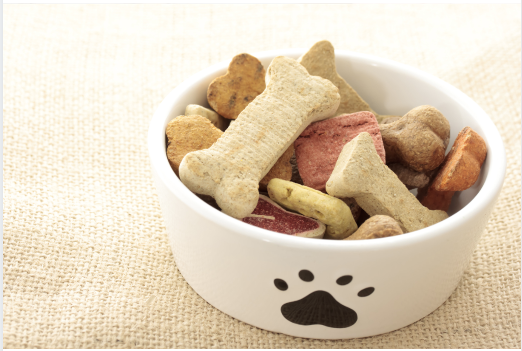 CBD Oil Dog Treats